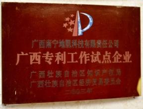 28-广西专利工作试点企业